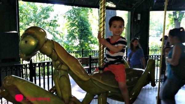bug carousel 2