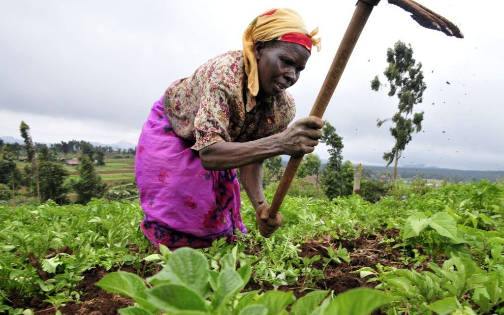 Congress Passes Historic Global Food Security Act