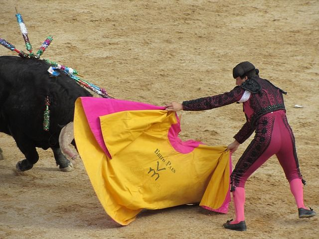 Uproar in Madrid over the Brutal Sport of Bullfighting