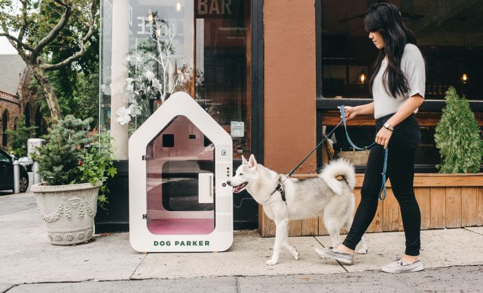 Woman walking dog in Brooklyn, New York stops at Dog Parker.