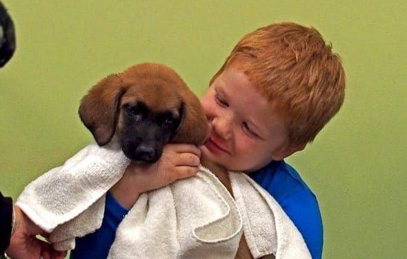 Animal Shelter Hosts Adorable Pajama Parties