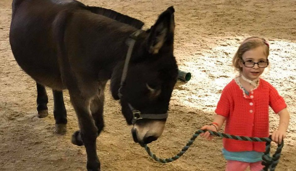 Amber's Donkey: Mute Girl Speaks for the First Time to Rescue Animal