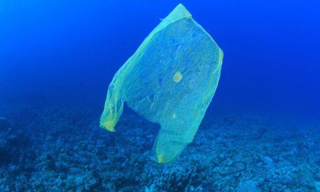 Billionaire Donates Fortune to Clean Up Ocean's Plastic Pollution