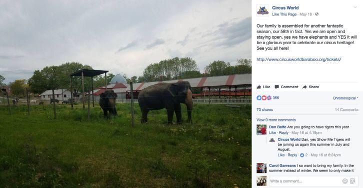 Elephants in captivity at Circus World, Baraboo WI
