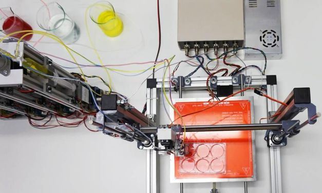 3D Printed Human Skin Could Help End Animal Testing