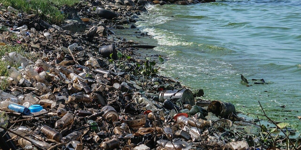 Is the EU About to Ban Single-Use Plastics?