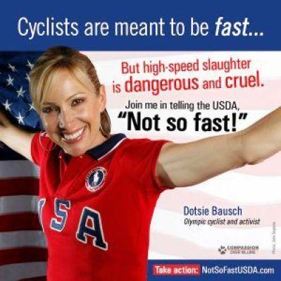 Dotsie high-speed slaughter