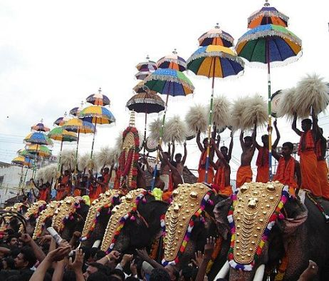 Elephants at a religious festival in Kerala, India.