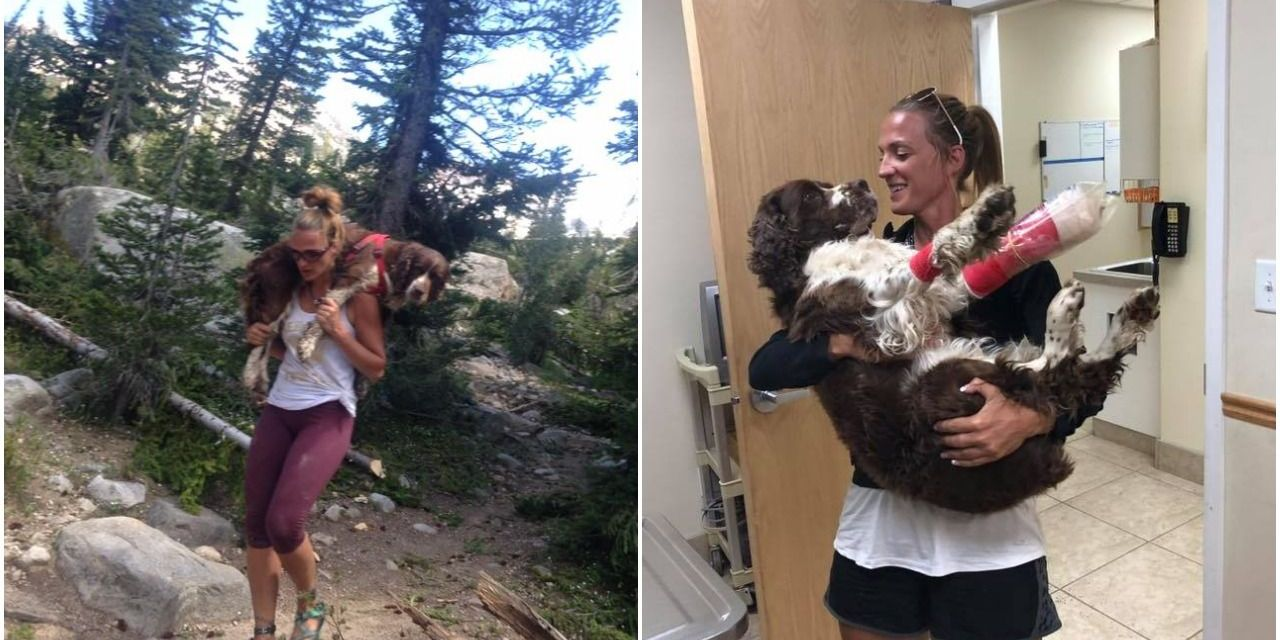 Hiker Carries Injured Dog 6 Miles On Her Back to Save His Life
