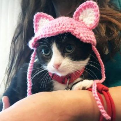 Cat with cute ear cap