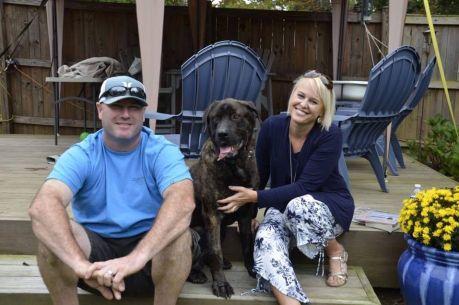 Starved dog gets new forever home