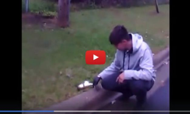 VIDEO: Kind Driver Revives Stunned Squirrel Almost Killed by Car