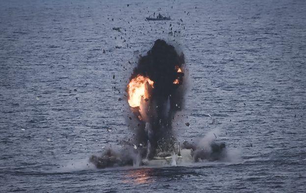 Illegal Whaling Ship 'Neutralized' by Spanish Navy off Somalia Coast