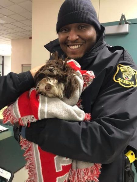 Missing Dog Survives 16 Inches of Snow and Polar Vortex to Reunite with Ecstatic Family