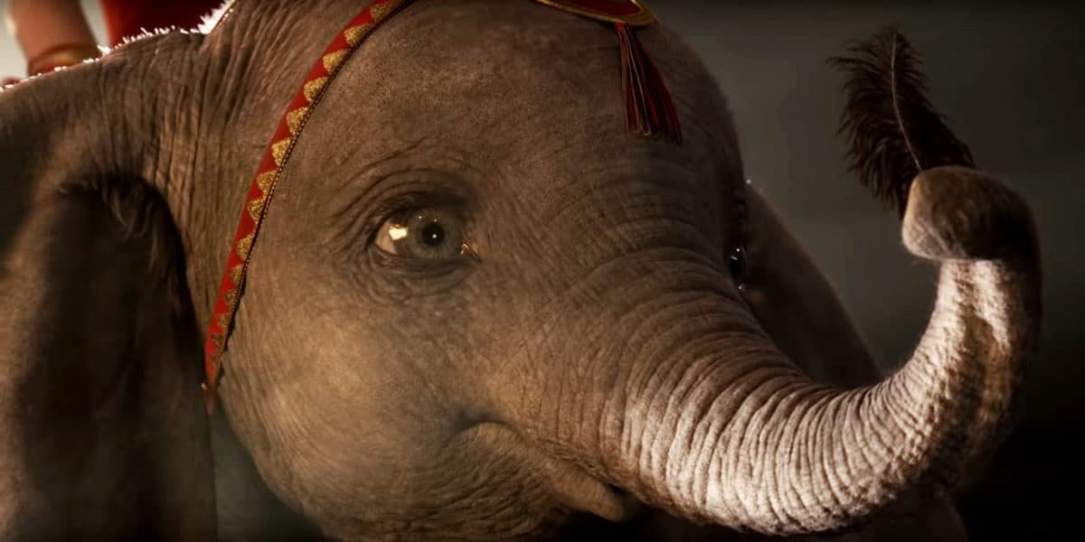 Lessons from Dumbo: Why California Must Ban Animals in the Circus