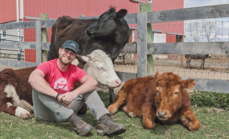 Animal Planet to Air Barn Sanctuary Series, Showing Love and Compassion for Farmed Animals
