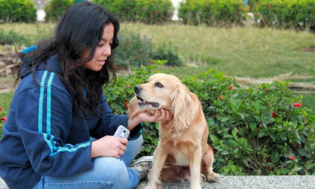 New Study: Petting A Dog or Cat for Just 10 Minutes Helps Erase Your Stress