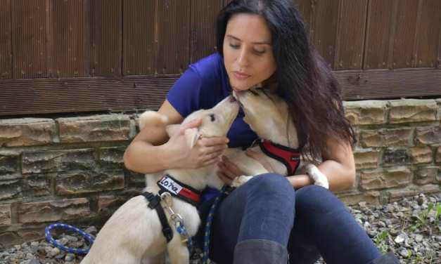 Lady Freethinker Helps Victims of Korea's Brutal Dog Meat Trade