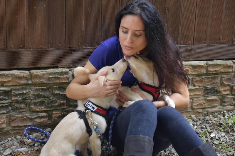 nina jackel with rescue dogs korea dog meat lady freethinker