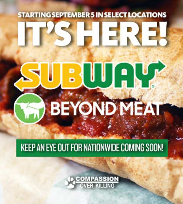 Subway Debuts Plant-Based Meatball Sub - So How Does It Taste?
