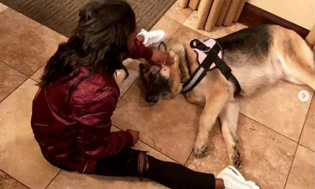 Simone Biles Sits in Dog Kennel to Help Shelter Animals