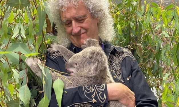 Brian May of Queen Wants the World to Go Plant-Based