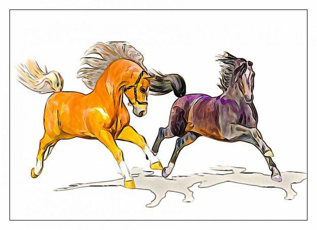 Daz Horse 2 3d horse model | Illustration style render