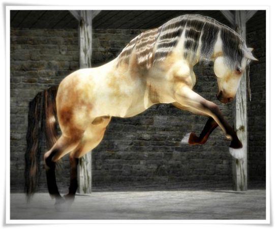 Carrara dynamic hair on Daz Millennium Horse