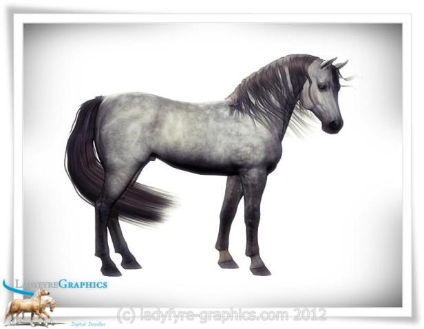 Arab Blood Morph for Daz Horse 2