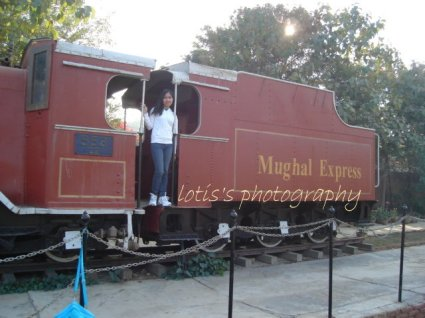 The Mughal Express