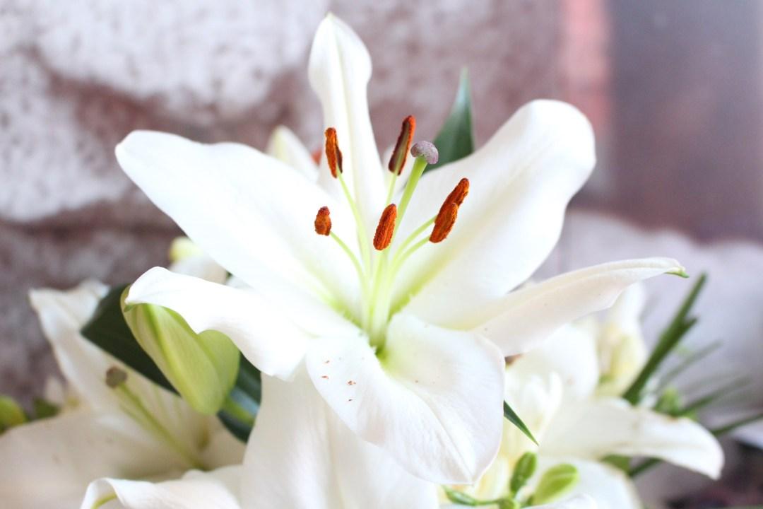 alt-fleur-de-lys-jolies-fleurs-anniversaire-bouquet-interflora