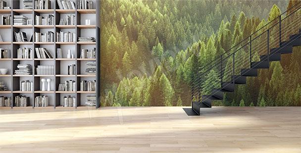 alt-papier-peint-mural-forêt-verte-My-Loview