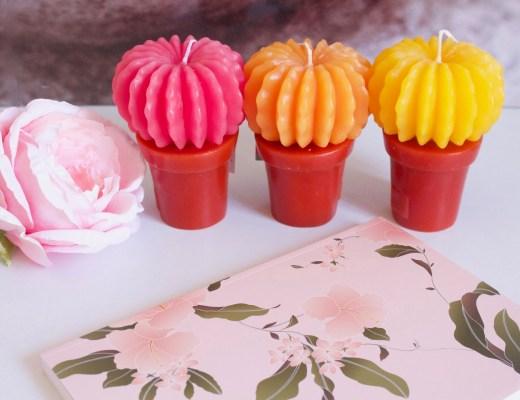 alt-bougies-cactus-bougies-la-française