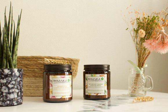 alt-bougies-botanica-vétiver-des-caraibes-Magnolia-Himalaya