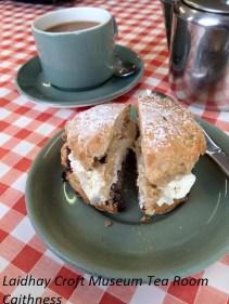 Scone & Cream with tea at the Tea Room