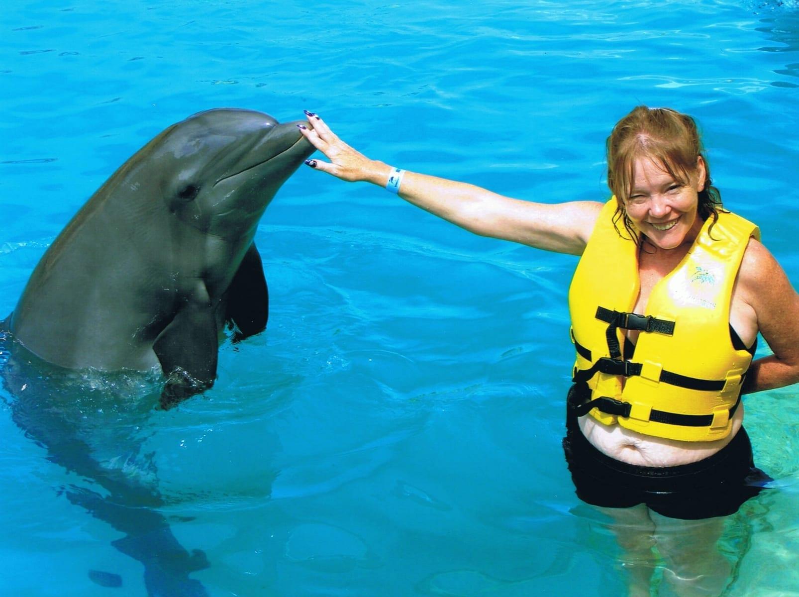 kathleen-dolphin
