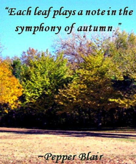 autumn-quotes-43