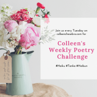 Colleen's Weekly #Poetry Challenge # 35 – PAST & FUTURE