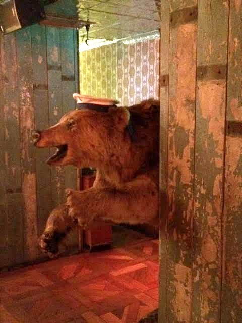 bear behind corner