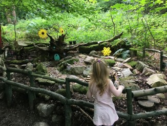 The fairy trail - Slieve Gullion Park