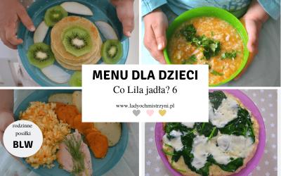 Przepisy dla dzieci BLW – co Lila jadła? 6