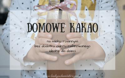 Domowe kakao (na mleku jaglanym)