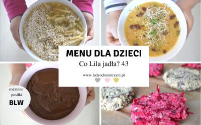 Jedzenie BLW – co Lila jadła? 43