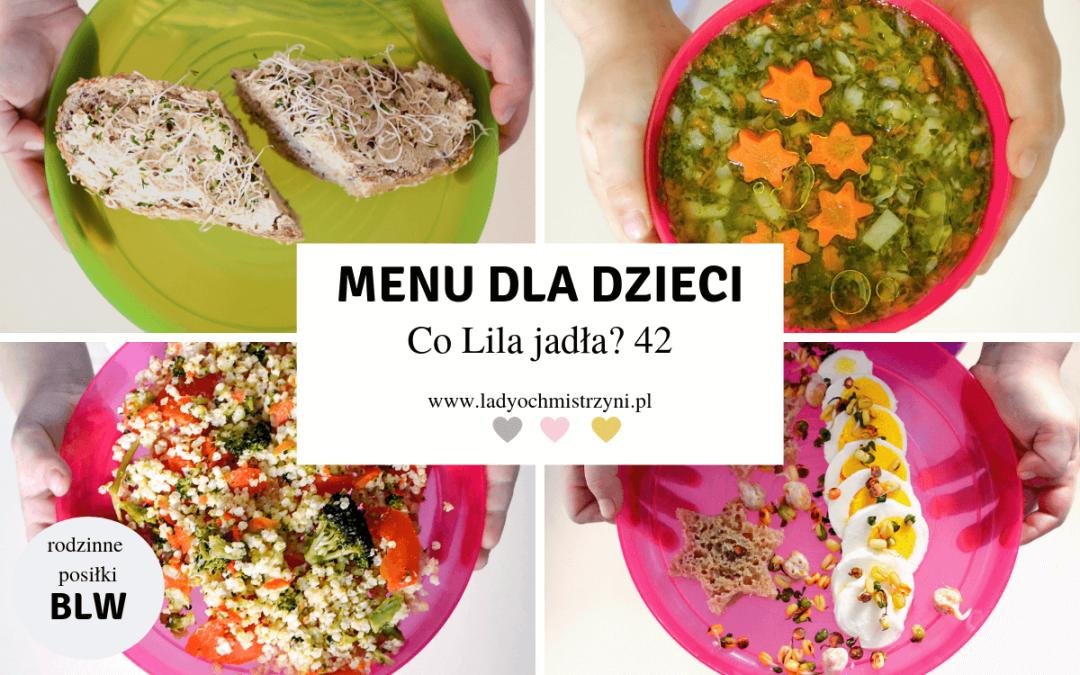 Menu na cały dzień BLW – co Lila jadła? 42