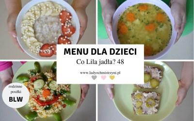 Kulinarne inspiracje dla dzieci BLW – co Lila jadła? 48
