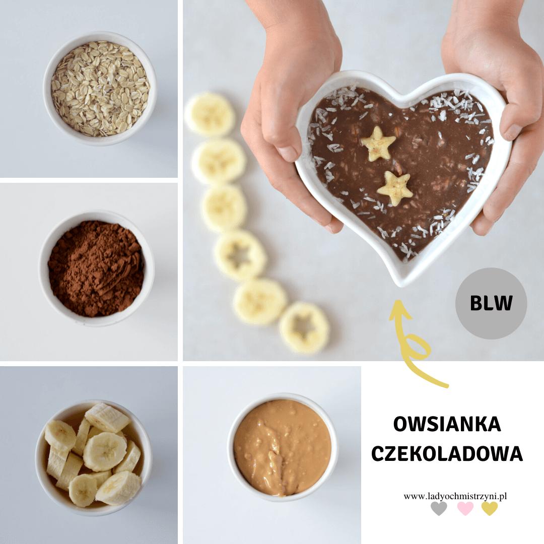 czekoladowa owsianka BLW