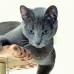 Profile picture of Fionamcg