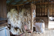 We also saw how all the wool is processed