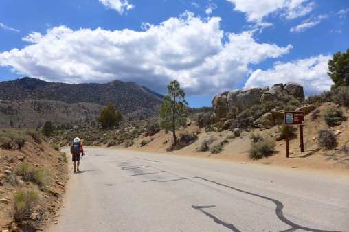 A successful trip