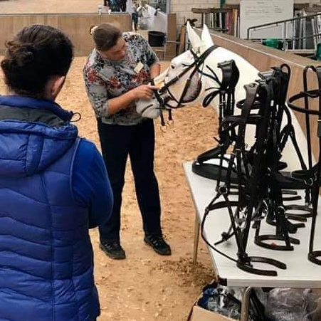 Helen Reader demonstrating how to put on a specialist bridle